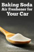 Baking Soda Air Freshener for your Car
