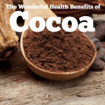 The Wonderful Health Benefits of Cocoa