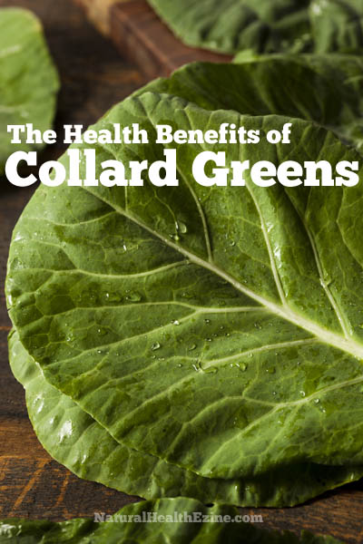The Health Benefits Of Collard Greens
