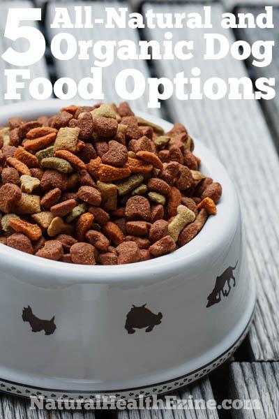 5 All-Natural & Organic Dog Food Options