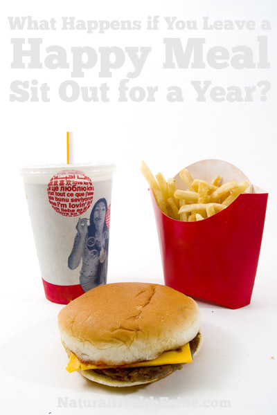 What Happens If You Leave A Happy Meal Sit Out For A Year?