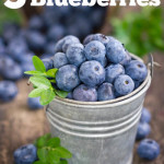 3 Health Benefits of Blueberries