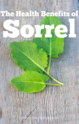 The Health Benefits Of Sorrel