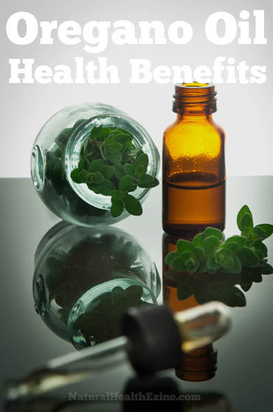 Oregano Oil Health Benefits