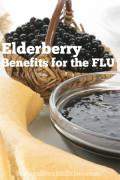 Elderberry Benefits For The Flu