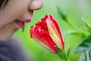 How Scents Can Affect Your Health