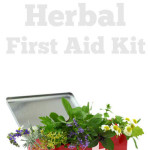 How to Assemble an Herbal First Aid Kit